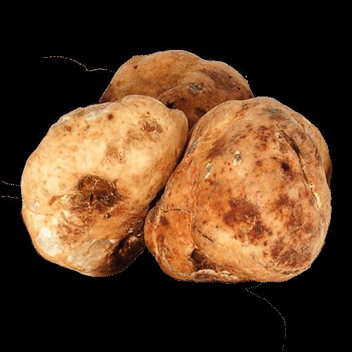 Bianchetto Truffle - Tuber albinum pico