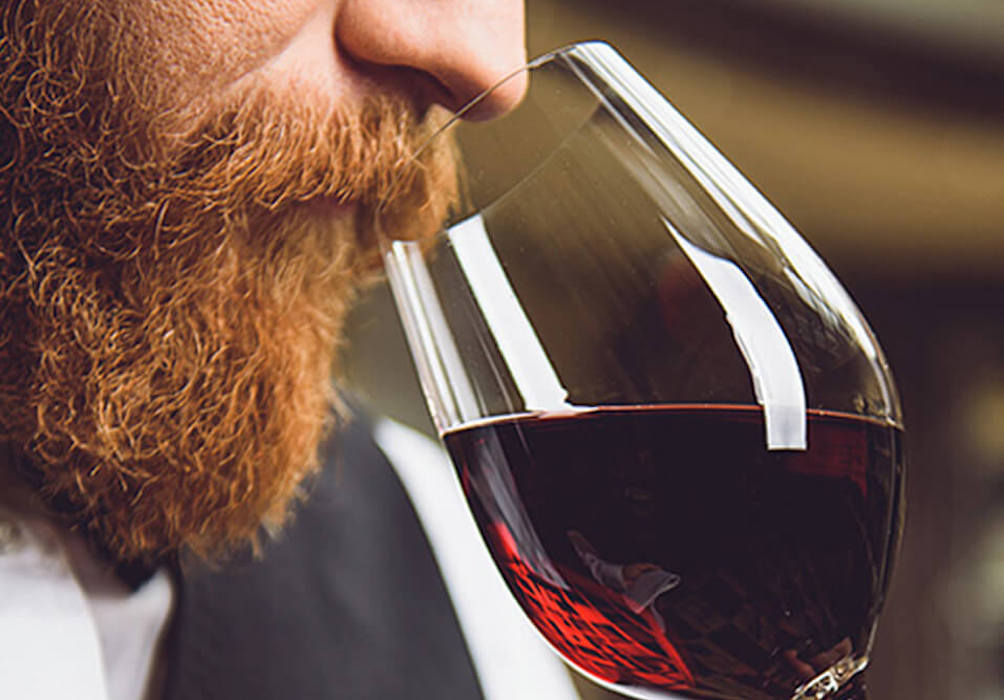 Barbera red wine tasting in Piedmont